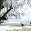 image rocky-glade-farm-7-jpg
