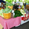 June 21st Market Day Photos
