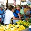 June 21st Market Day Photos