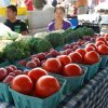 June 22nd 2013 Market Day Photos