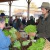 Nov 16th 2013 Market Day Photos