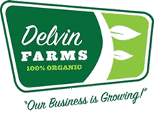 delvin-logo