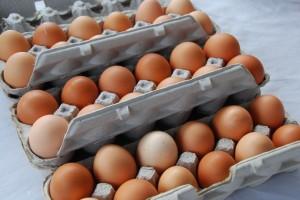Tennessee Free Range Eggs