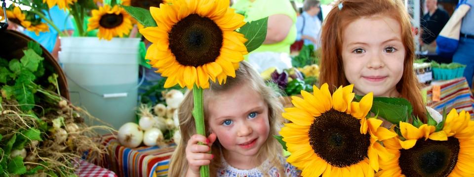 Market Sun Flowers