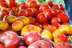 farm tomatoes
