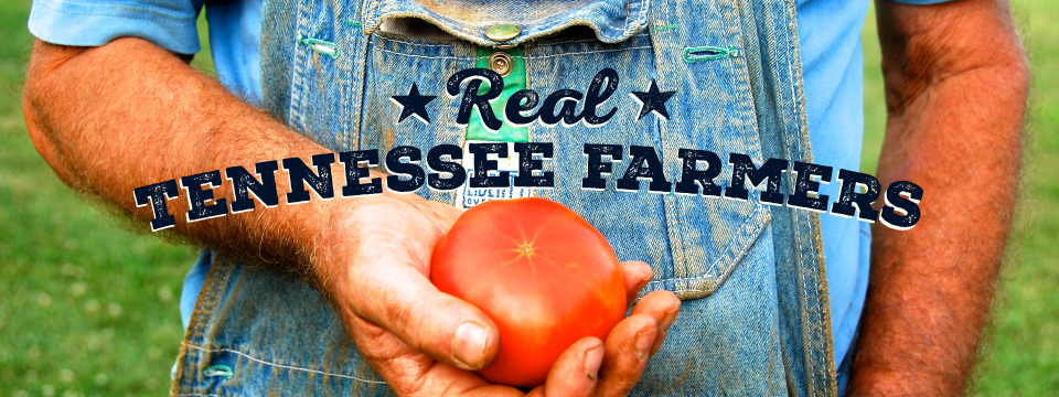 Real Tennessee Farmers