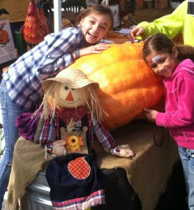 Guess the weight and win the largest pumpkin