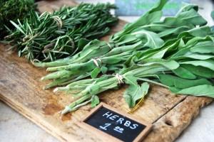 farm fresh herbs