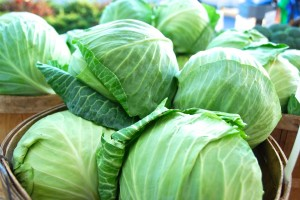 local cabbage
