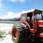 Delvin Farms #7