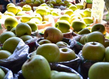 Sept 10th Market Day Photos