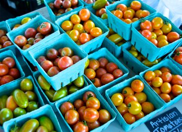 July 29th Market Day Photos