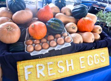 Sept 30th Market Day Photos