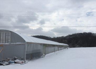 Farm Snow Photos 2018