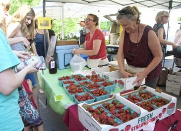 Strawberry Festival Photos 2018