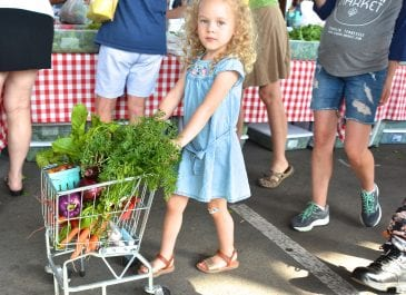 June 16th Market Day Photos