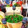 Aug 16th Market Day Photos