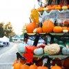 FFM Pumpkinfest Tree