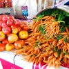 July 19th Market Day Photos