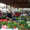 May 10th Market Day Photos