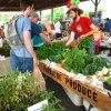 May 24th Market Day Photos