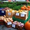 Oct 11th Market Day Photos
