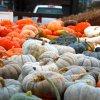 Oct 24th Market Day Photos