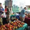 Sept 21st 2013 Market Day Photos