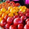 Tomato Festival Photos
