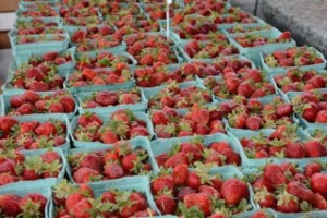Delvin Farms Strawberries 1st Place Winner