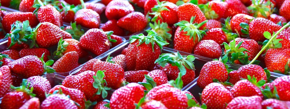 Franklin Farmers Market Strawberries