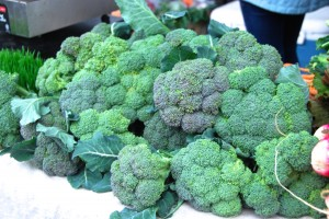 farm broccoli