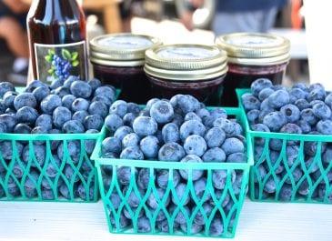 June 15th Market Day Photos