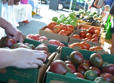 July 6th Market Day Photos