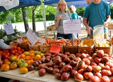 July 27th Market Day Photos