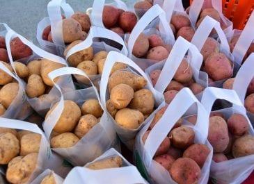 Sept 14th Market Day Photos
